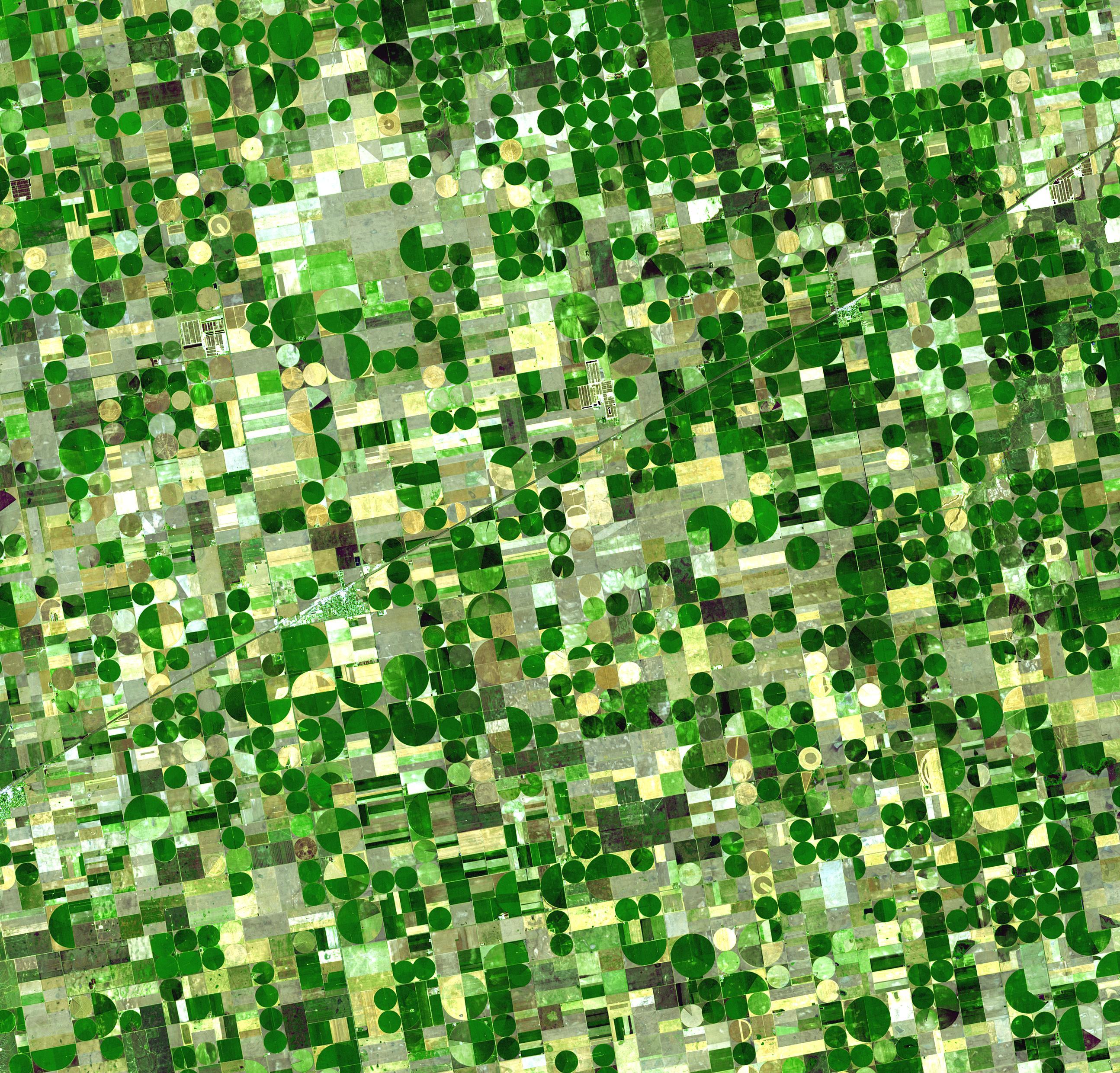 Kansas Crop Circles. Image courtesy of NASA/GSFC/METI/ERSDAC/JAROS, and U.S./Japan ASTER Science Team.
