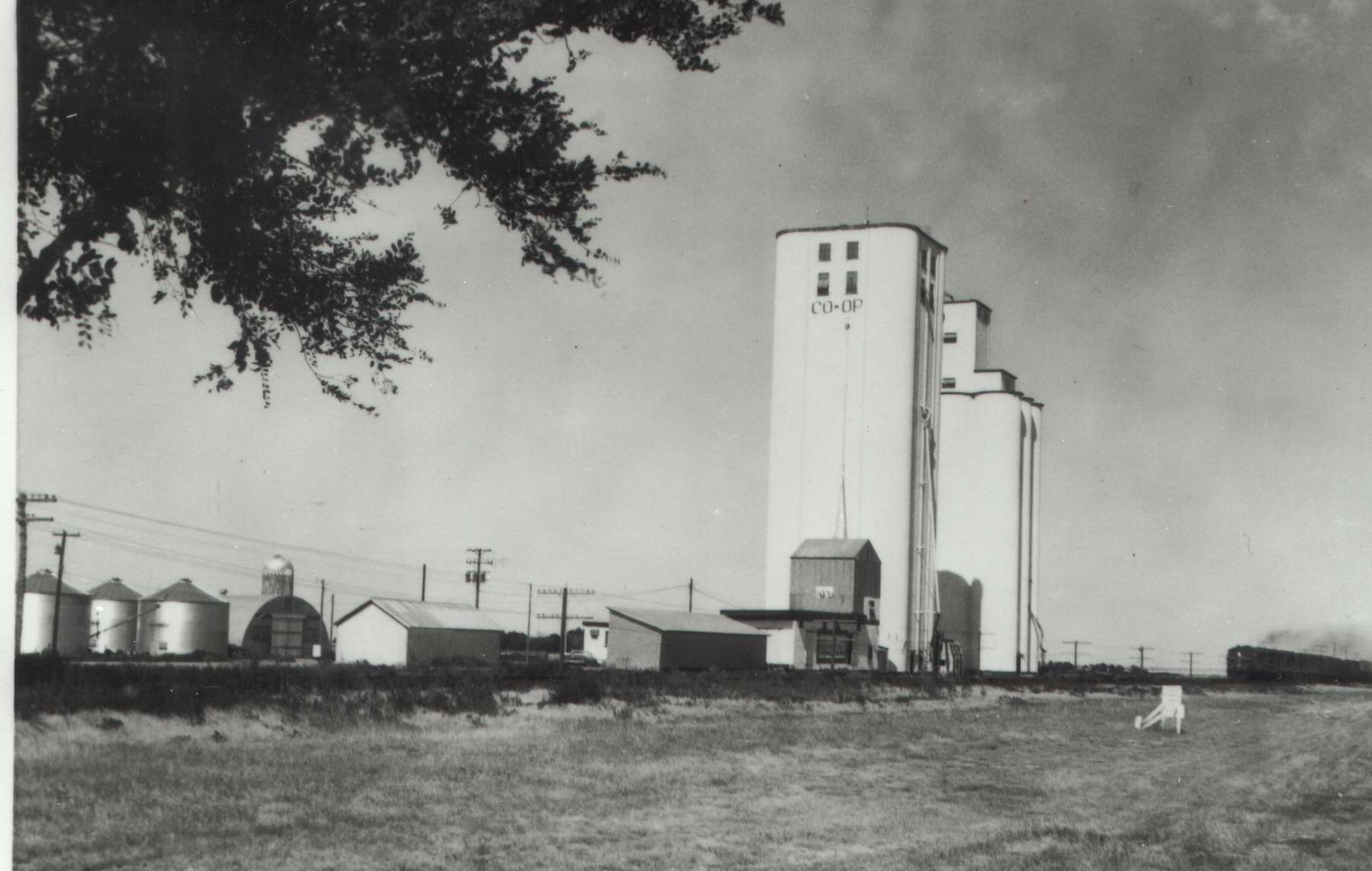 High Plains Museum | PM399FARM Co-op elevator in Kanorado KS with freight train in background.
